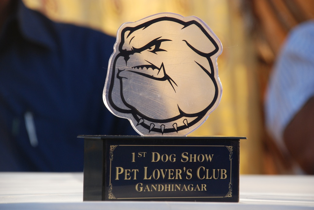 1st Dog Show:- Pet Lover's Club- Gandhinagar