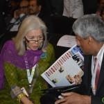 Images of Inaugural Function of Vibrant Gujarat Global Summit 2013- Mahatma Mandir, Gandhinagar Gandhinagar, Gujarat, India.